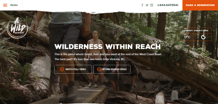 wildrenfrew web design