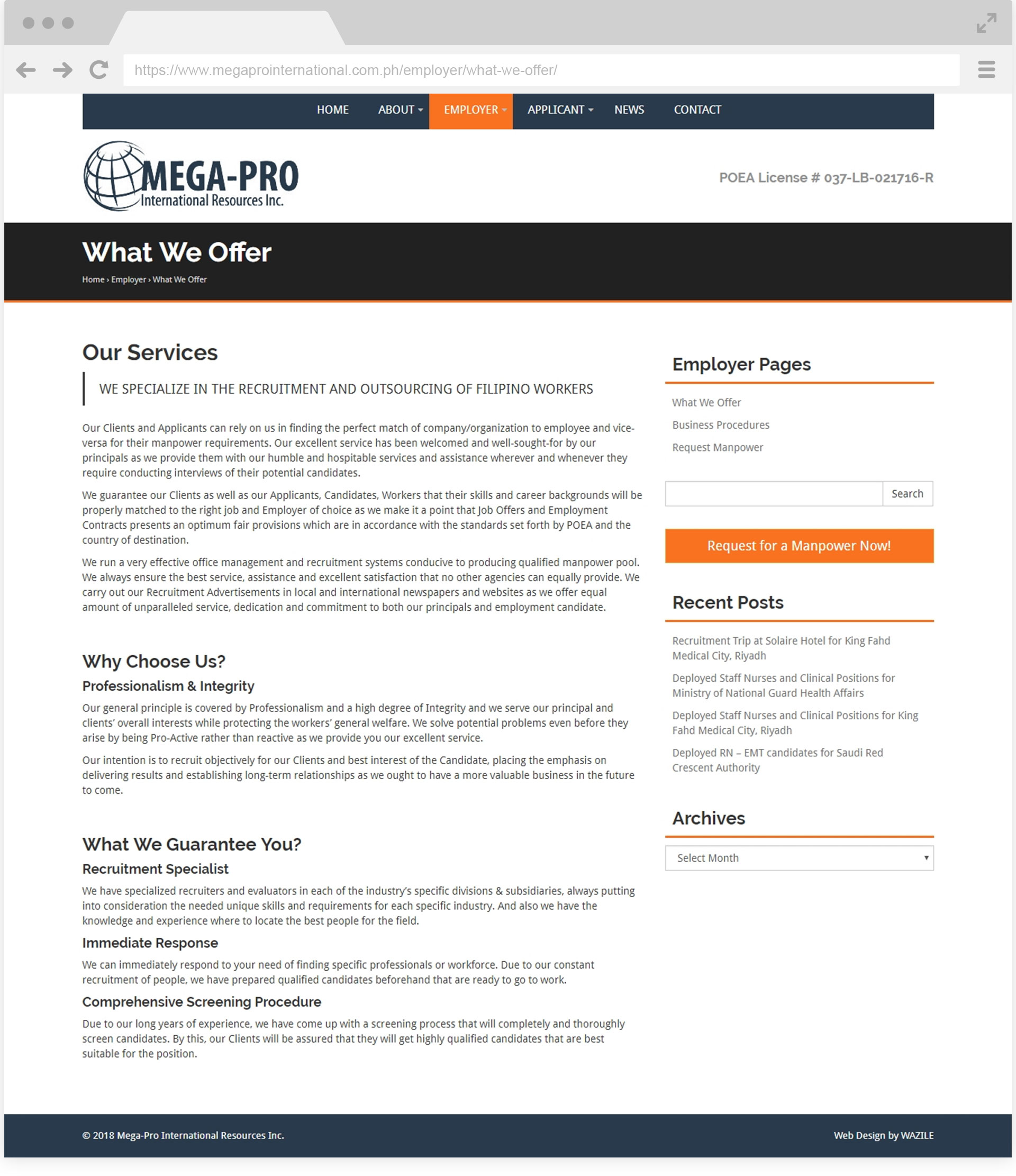 Mega-Pro International What We Offer